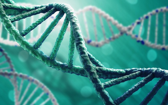 Tumori ereditari: come effettuare una diagnosi precoce?